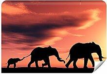 Demur Fototapete Vlies Afrika - Tapete Tapeten
