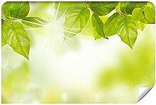Demur Fototapete Vlies Die Grüne Energie - Tapete