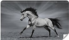 Demur Fototapete Vlies Pferd - Tapete Tapeten