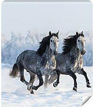 Demur Fototapete Vlies Pferde - Tapete Tapeten