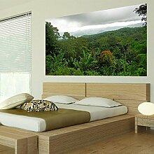 denoda® Regenwald - Wandbild 107 x 60 cm (Wandsticker Wanddekoration Wohndeko Wohnzimmer Kinderzimmer Schlafzimmer Wand Aufkleber)