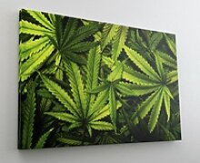 DesFoli Leinwandbild Natur Pflanze Cannabis