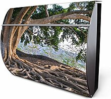 Design Edelstahl Briefkasten, Designer Wandbriefkasten halbrund kaufen, für A4 Post, rostfrei, 2 Schlüssel Briefkastenschloss, von Banjado Motiv Wurzeln
