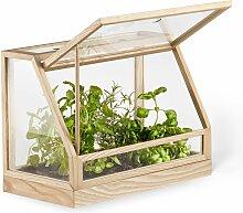 Gewachshaus Glas In Vielen Designs Online Kaufen Lionshome