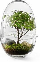 Design House Stockholm Grow Vase X-large