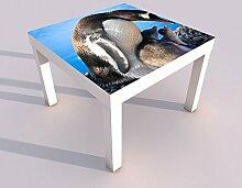 Design - Tisch mit UV Druck 55x55cm Pinguin