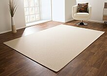 Designer Teppich Modern Pembroke Flachgewebe in