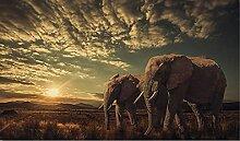 Diamant Malerei Elefant bei Sonnenuntergang 5D DIY
