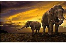 Diamant Stickerei Elefanten Und Baby Diy Diamant