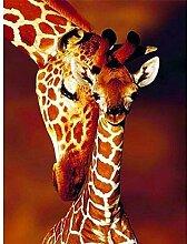 Diamond Painting Zwei Giraffen Diy Adult 5D