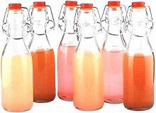 Dichte Konservierungs Flaschen aus Glas mit