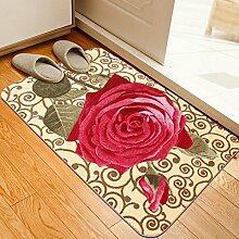DIDIDD Tür Eingang Matten / Türmatten / Wasserabsorption und Antikidding Mat / Badematte / Küchenmatten / Türmatten / Fußmatte,D,50X80Cm (20X31Inch)