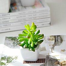 die fleischige eingetopft grünen pflanzen und dekoration der bonsai - paket auto - zubehör,sedum rubrotinctum