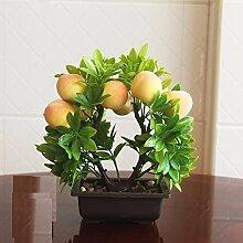 Die Frucht Yingkesong Pflanzen Zimmerpflanzen