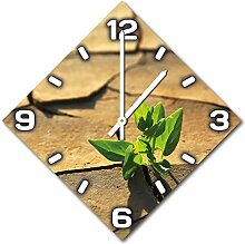 Die Pflanze in der Wüste, Design Wanduhr aus Alu Dibond zum Aufhängen, 48 cm Durchmesser, schmale Zeiger, schöne und moderne Wand Dekoration, mit qualitativem Quartz Uhrwerk