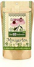Die Stadtgärtner Minigarten Echinacea |