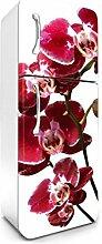 DIMEX LINE Kühlschrank Aufkleber Orchidee 65 x