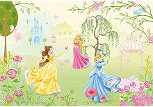 Disney FOTOTAPETE, Grau, Papier, Prinzessin,