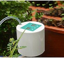 DIY Automatische Bewässerungssystem, Automatische
