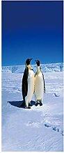 DIY Dekor abnehmbare Tür Aufkleber, Pinguine im