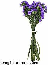 DIY echte kleine natürliche getrocknete Blumen