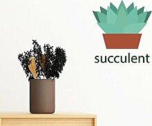 DIYthinker Kaktus Topfgrünpflanze Sukkulente