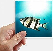 DIYthinker Meeresorganismus Tropical Sea Fish