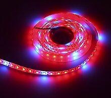 Docooler 5M LED Pflanze Wachsen Licht/Hydroponischen Pflanze Wachsen Licht Streifen, 72W 5M 300 LED 5 Red 1 Blue Water Resistan