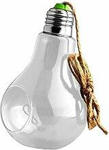 Doitsa Vase Glühbirne Modellierung Glas Vase Haus