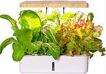 Doris Indoor Kräuteranbau-Kit, Hydrokultur