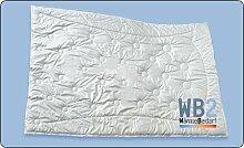 dormabell Zudecke Kamelhaar Edition WB2 WärmeBedarf2 155/220 cm