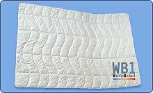 dormabell Zudecke Leinen Edition WB1 WärmeBedarf1 135/200 cm