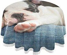 DOSHINE Tischdecke, Französische Bulldogge Tiere,