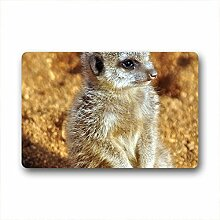 DOUBEE Design Erdmännchen Meerkats Fussmatte Schmutzmatte Fußabstreifer Garten Nach Hause 46cm X 76cm