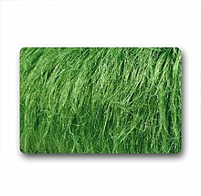 DOUBEE Design Gras Grass Fussmatte Schmutzmatte Fußabstreifer Garten Nach Hause 46cm X 76cm