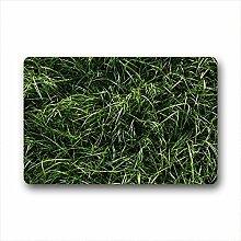DOUBEE Design Gras Grass Herzlich Fussmatte Premium Schmutzmatte Fußabstreifer 46cm X 76cm