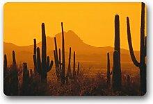 DOUBEE Design Saguaro Herzlich Fussmatte Premium Schmutzmatte Fußabstreifer 46cm X 76 cm