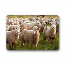 DOUBEE Design Schaf Sheep Herzlich Fussmatte Premium Schmutzmatte Fußabstreifer 46cm X 76cm