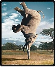 """Doubee Elefant Elephant Fleece Blanket Decke Kuscheldecke Wolldecke 50"""" x 60"""",127cm X 152cm"""