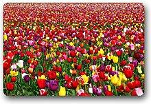DOUBEE Generisches Design Schöne Blumen Flowers Fussmatte Premium Schmutzmatte Haus Fußabstreifer 46cm X 76 cm