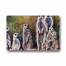 DOUBEE Generisches Erdmännchen Meerkats Fussmatte Schmutzmatte Garten Nach Hause Türmatte 60cm X 40cm