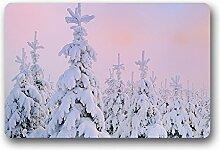 DOUBEE Generisches Schnee Winter Fussmatte Schmutzmatte Garten Nach Hause Türmatte 60cm X 40cm
