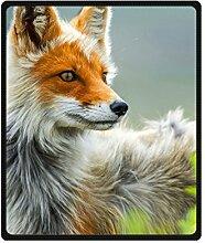 """DOUBEE Niedlich Fox Fleece Blanket Decke Kuscheldecke Wolldecke 50"""" x 60"""",127cm X 152cm"""