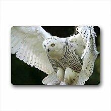 DOUBEE Owl Fussmatte Premium Schmutzmatte Türmatte aus Garten Nach Hause 60cm X 40cm