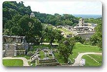 DOUBEE Palenque Fussmatte Premium Schmutzmatte Rechteckige Türmatte aus Garten Nach Hause 60cm X 40cm