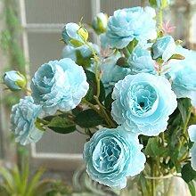 Doudou Künstliche Blume Rose Blume Pfingstrose