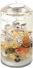Dreamlight Smart Coral großer Teelichthalter Glas