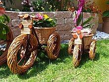 Dreirad Trike 45 cm aus Korbgeflecht, Korbmaterial wetterfest**, WITZIGE GARTENDEKO, ideal als Pflanzkasten, Blumenkasten, Pflanzhilfe, Pflanzcontainer, Pflanztröge, Pflanzschale, Rattan, Weidenkorb, Pflanzkorb, Blumentöpfe, Holzschubkarre, Pflanztrog, Pflanzgefäß, Pflanzschale, Blumentopf, Pflanzkasten, Übertopf, Übertöpfe, , Holzhaus Pflanzgefäß, Pflanztöpfe Pflanzkübel