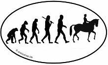 Dressurreiten Reiten Dressur Pferd EVOLUTION