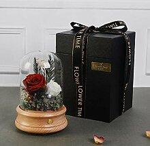DuDuDu Weihnachten Geschenk ewige Blume Rose Night